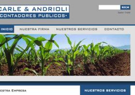 Carle & Andrioli Contadores Públicos